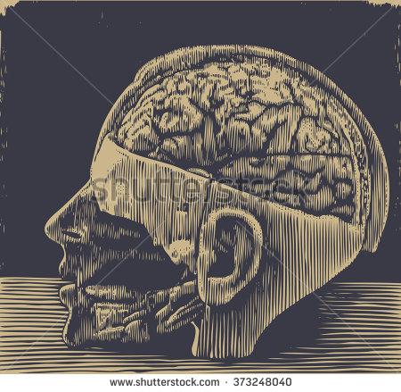 stock-vector-brain-medical-visual-aids-halftone-design-element-vector-illustration-373248040.jpg