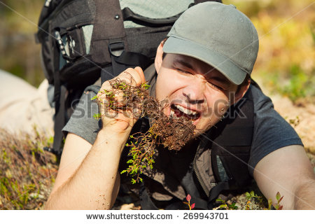 stock-photo-young-hungry-man-tourist-surviving-by-eating-grass-and-roots-in-forest-269943701.jpg