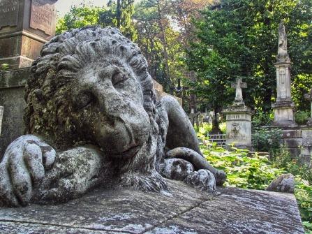 cemetery-1341979_960_720